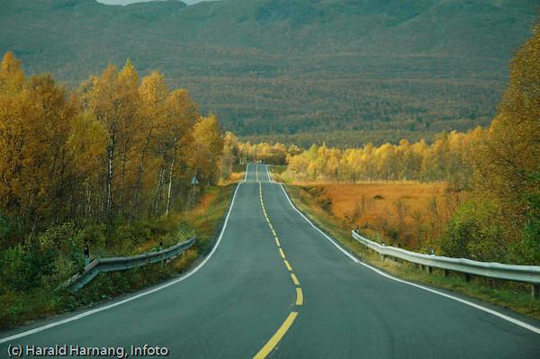 E6 over Ballangsmarka, sør for Narvik