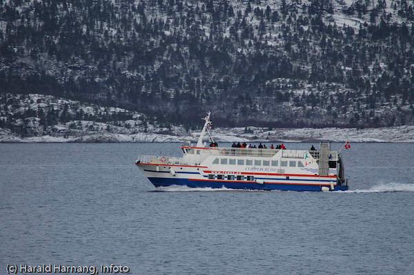 Turistbåt Ofotfjorden, spekkhoggersafari.