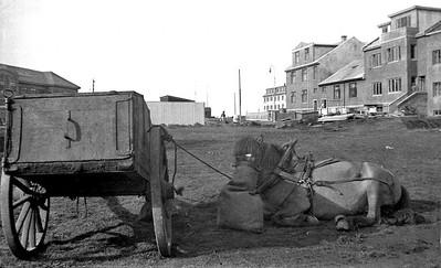 1930_40EkkiBrunn_jj