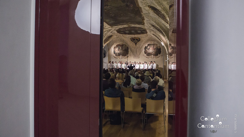 20160615-191523_0027-cc-jarni-koncert