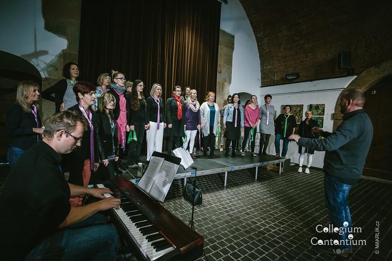 20171004-180209-0027-cc-vyrocni-koncert-25-let-pisecka-brana
