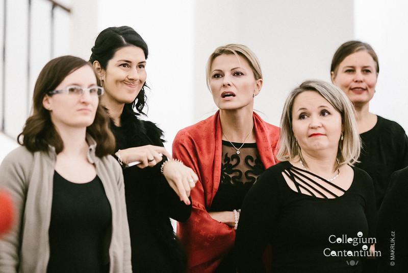 20181212-182153-0071-cc-vanocni-koncert-muzeum-hudby