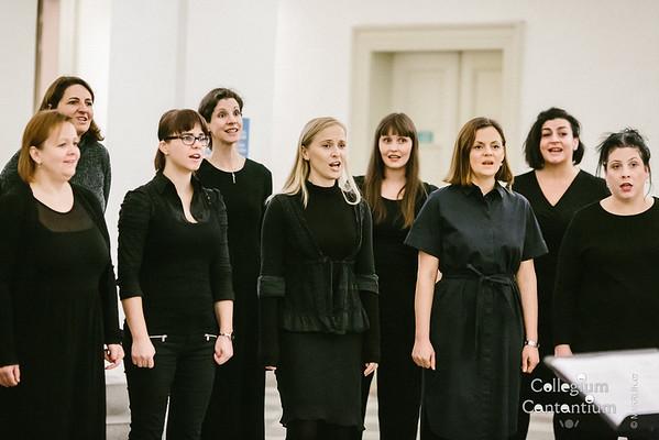 20181212-181707-0052-cc-vanocni-koncert-muzeum-hudby