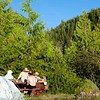 Wilson Lake Rec Site