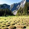 """Bumpy Meadows"" in morning light."