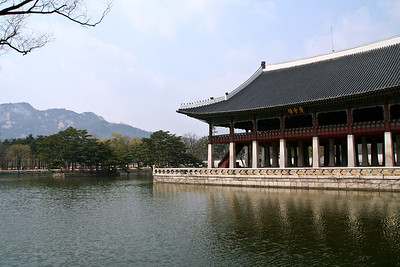 Palace Grounds Again Seoul