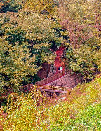 Panygo Yuldong Park (Bungee Jump)