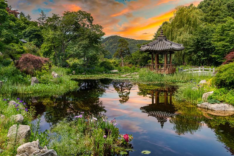 The Morning Calm Garden