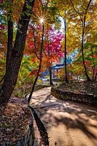 2016-11-08_Biwon_Chwihanjeong_Sunburst_AHDR1434-