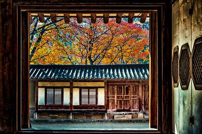 2016-11-08_Biwon_Yeongyeong-dang_MapleLeavess_AHDR1622-