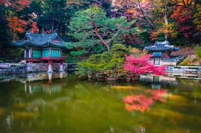 2016-11-08_Biwon_Buyong-ji_pond_AHDR1230-3
