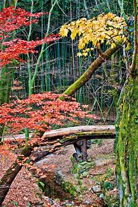 2010-11-13_Damyang-6307Sosweiwon_StoneBridge-vertical