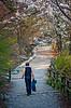 2013-04-21_Seoul_Namsan_SpringBlossoms_ManOnTrail-8041