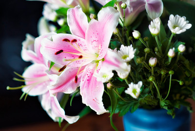 20011-09-11_Seoul_Bouquet_Macro_Pink_with_Others-8618