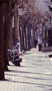Shinchon-dongJan_4_03_06a1a