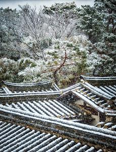 2016-02-28_Gydeong_SnowyRooftopsVert_AudoraHDR-7333-