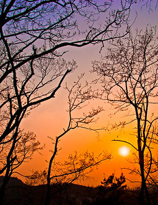Simple-Sunset-0239