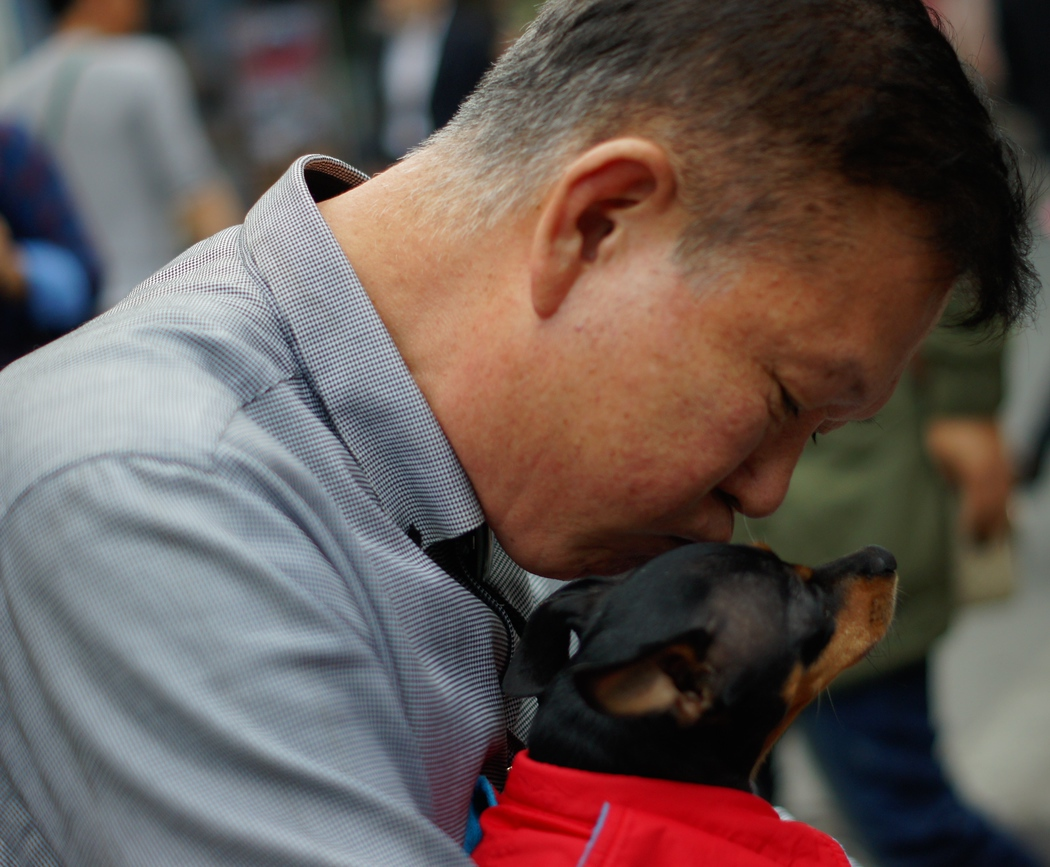 A Korean man enjoying an intimate encounter with his dog giving it a kiss - Insadong (Seoul), Korea.  Travel photo from Insadong (Seoul), Korea.