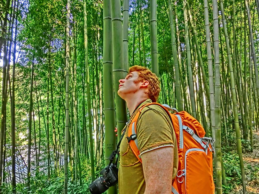 Nomadic Samuel admiring the bamboo forest