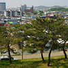 Adventures in Gyeonggi provinces capital city of Suwon.