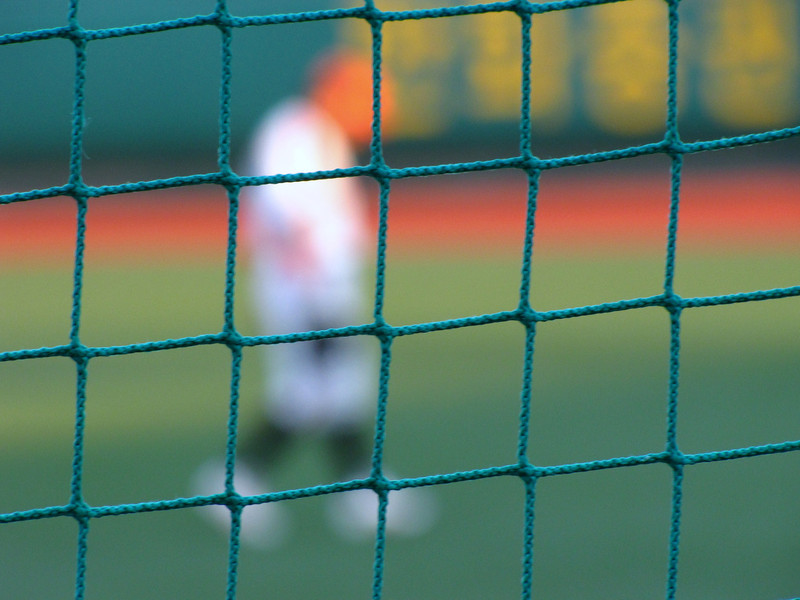 "Through the netting a blurred Korean baseball player for the Hanhwa Eagles walks on the field.  Travel Photo from my Hanwha Eagles Korean baseball gallery. <a href=""http://nomadicsamuel.com"">http://nomadicsamuel.com</a>"