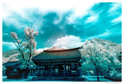Seonunsa Temple (선운사)