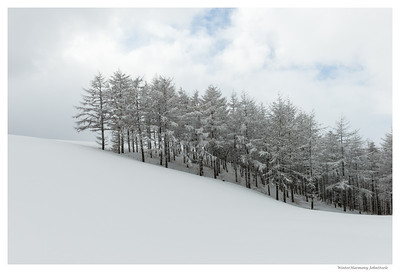 WinterHarmony - Pictures of Korea