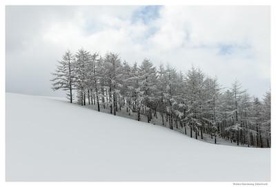 WinterHarmony - Pictures of Korea