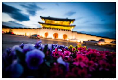 Kwanghwamun (광화문)