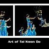 Art of Tai Kwon Do
