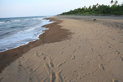 Plaża Morza Karaibskiego