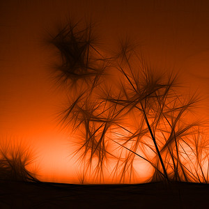 Alien Trees