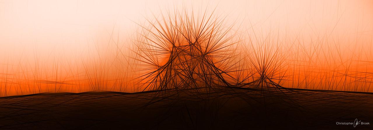 Spiny Haystacks