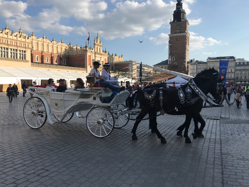 Krakow horse and cart