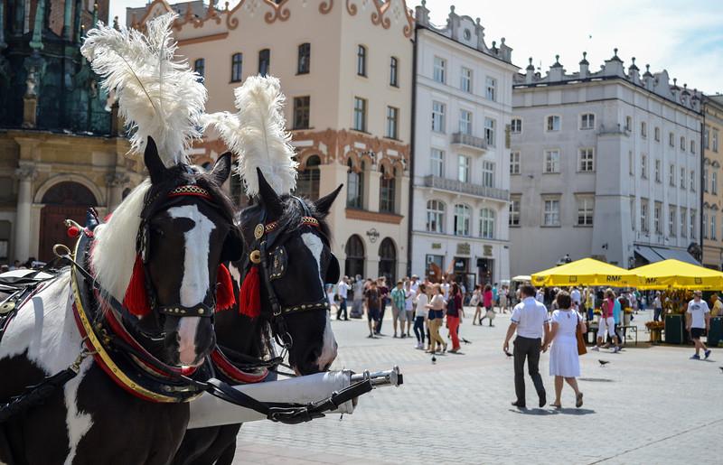 Main Square, Kraków (Rynek Glowny)