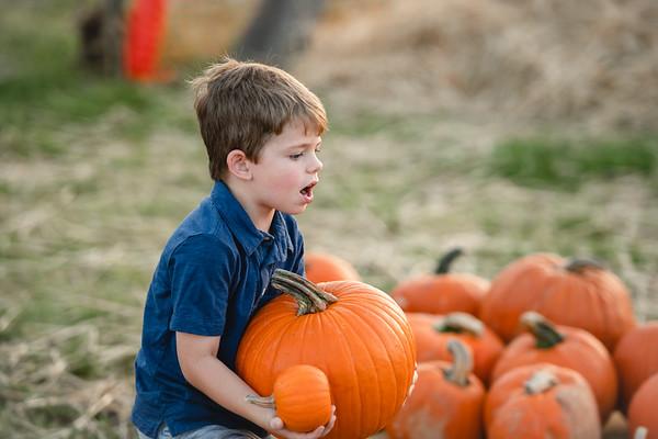 Pumpkins-October2019-115