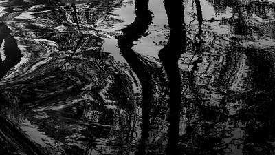 Speiling av trær i rennende vann