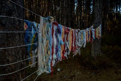 Kunst i skogen