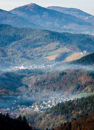 black forest valley