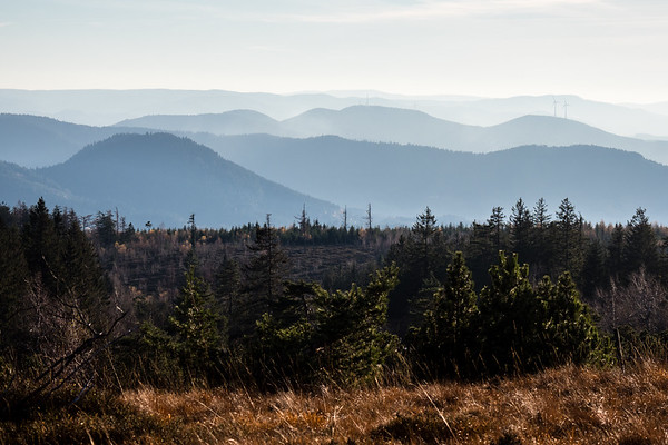 black forest range