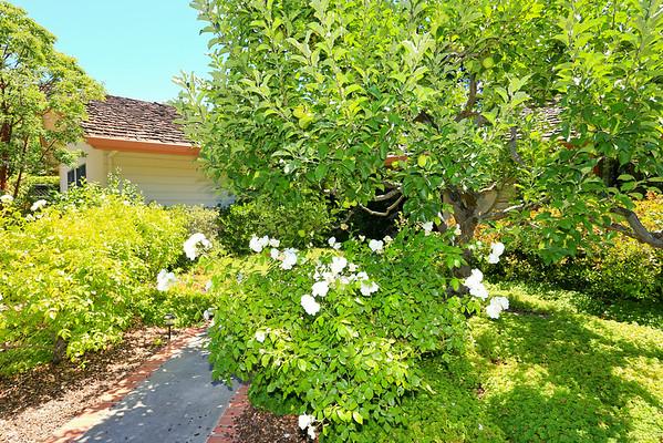 152 Mount Hamilton Avenue, Los Altos, CA