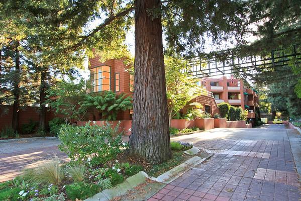4250 El Camino Real, Palo Alto #A107