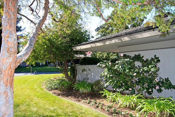 58 Bay Tree Lane, Los Altos