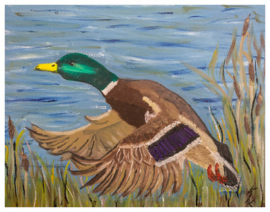 GreenHead - by Kristie Campbell, 2014