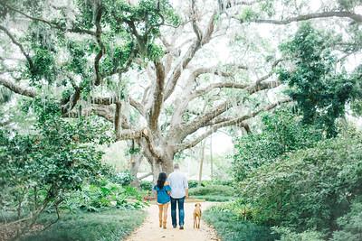Kristina + Tyler    Washington Oaks Park Engagement