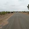 079 Kruger roads
