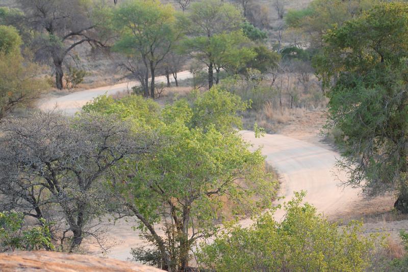 077 Kruger roads