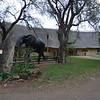 044 Letaba Camp Elephant Museum