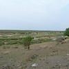 089 Landscape