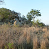 094 Rocky outcrop - notice the Klipspringer on the rock to the right